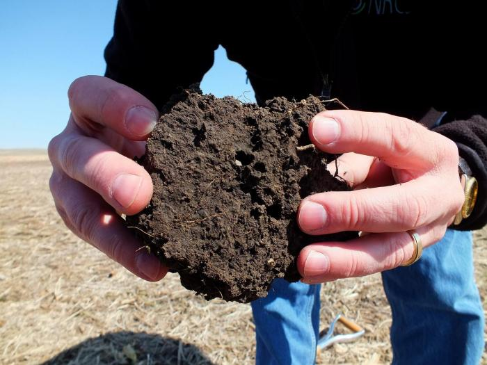soil_ped_high_porosity_1296